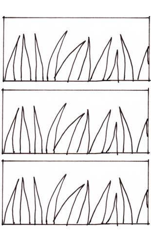 Grass-ikat-drawing